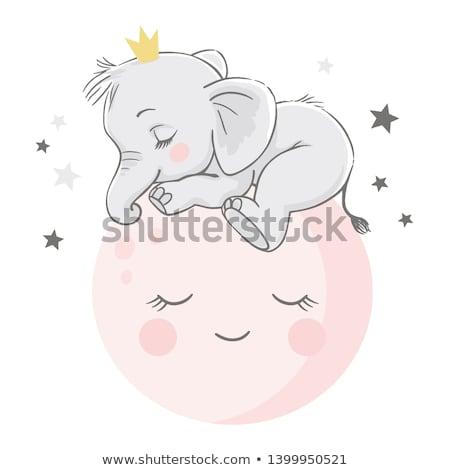 cute · bebé · vector · creativa · artístico · diseno - foto stock © indiwarm