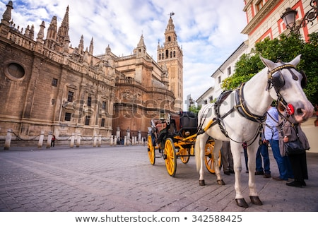 Seville Cathedral detail Stock photo © aladin66