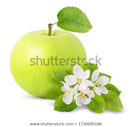 background with green apples and flowers stock photo © boroda
