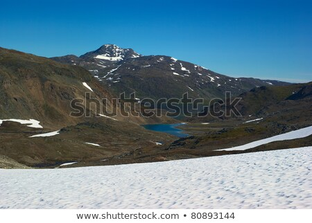 View from the Pass to Sulitjelma in the Direction of Lake Sarjasjavrre Stock photo © ildi