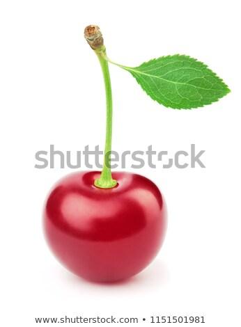 Fresh Ripe Cherry Stock photo © zhekos
