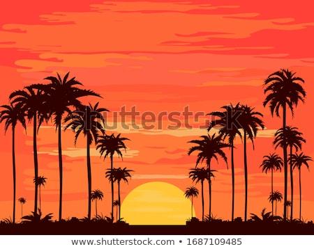 colorido · pôr · do · sol · nuvens · árvore · silhuetas · belo - foto stock © spectral