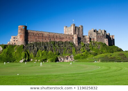 bamburgh castle and cricket course stock photo © capturelight