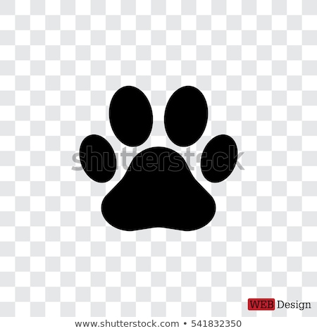 Dog paw prints Stock photo © ElinaManninen