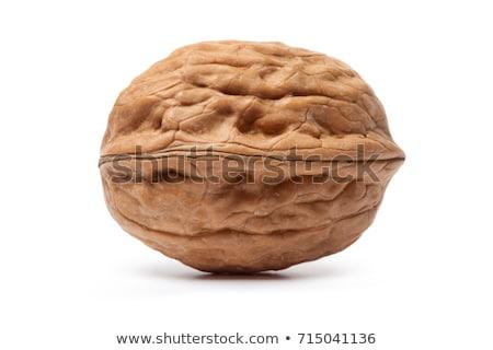 Walnut isolated on white background stock photo © vaeenma