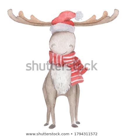 クリスマス ムース 帽子 休日 花輪 赤 ストックフォト © Lightsource