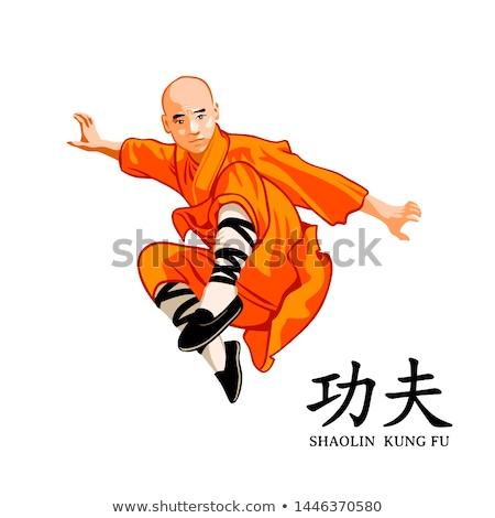 karate · rúgás · ugrás · feketefehér · sebesség · fekete - stock fotó © mayboro1964