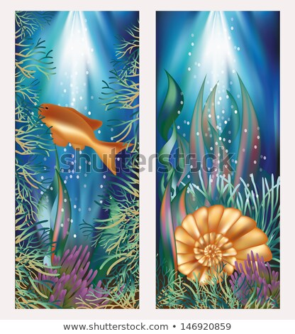 Stok fotoğraf: Underwater World Two Banners With Golden Fish And Seashell Vector Illustration