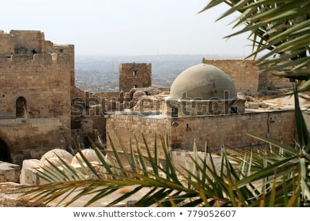aleppo ancient citadel landmark in syria  Stock photo © travelphotography
