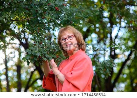 Nő gyönyörű haj háttérvilágítás fiatal nő portré Stock fotó © stepstock