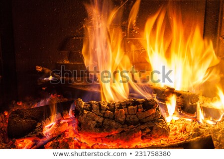 Burning Log with Flames in Fireplace Stock photo © silkenphotography