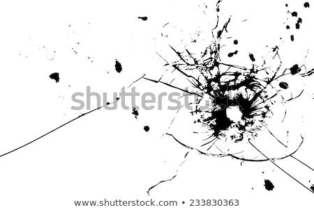 Kogels geweld ander woorden dood beestachtigheid Stockfoto © alptraum