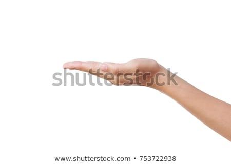 Közelkép gyönyörű kéz pálma felfelé izolált Stock fotó © oly5