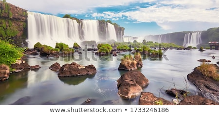 Iguazu Waterfalls in Argentina stock photo © leetorrens