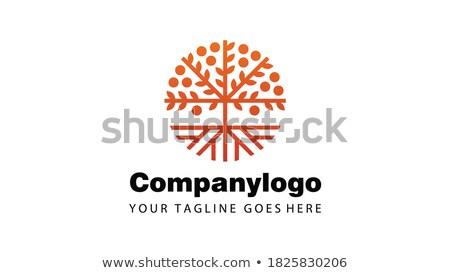 dizayn · uzun · gölgeler · dünya · iletişim · çalışma - stok fotoğraf © tashatuvango