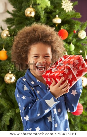 Young Boy Holding Christmas Present In Front Of Christmas Tree Stock photo © monkey_business