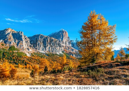 Autumn at Passo Falzarego, Dolomites, Italian Alps Stock photo © fisfra