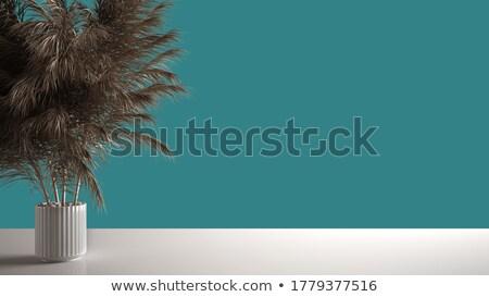 üres színes polcok szoba absztrakt bútor Stock fotó © tilo