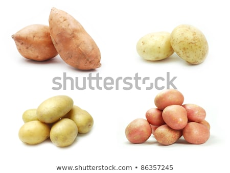 four varieties of potatoes Stock photo © philipimage