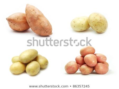 four varieties of potatoes stock photo © philipimage