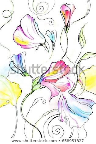 Virág textúra papír tavasz természet terv Stock fotó © slunicko
