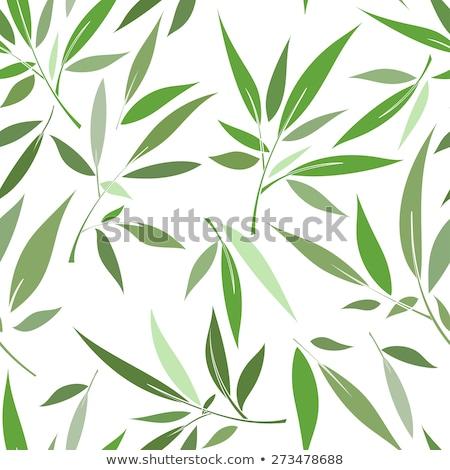stylized green grass seamless pattern stock photo © voysla