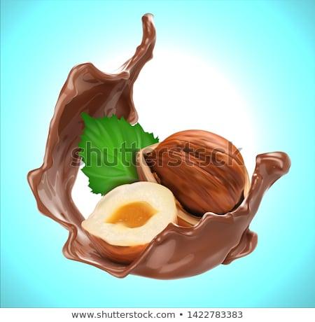 Hazelnoten textuur voedsel ontbijt stress lunch Stockfoto © tycoon