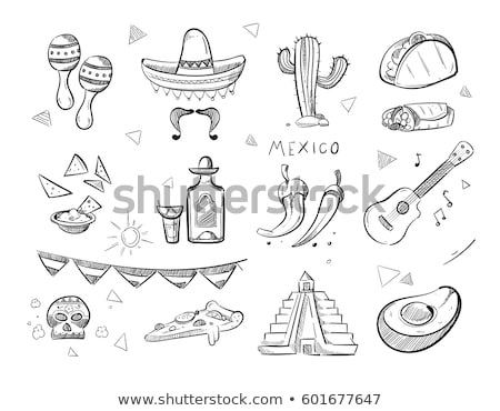 hand drawn vector set of mexican symbols stock photo © netkov1