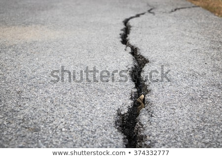 fissured asphalt Stock photo © prill