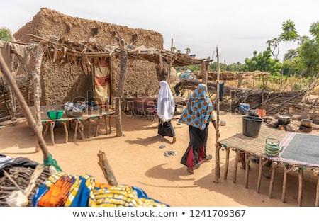 made in niger Stock photo © tony4urban