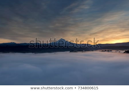 brouillard · rivière · matin · paysage · brouillard · village - photo stock © Kotenko