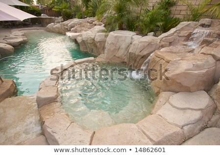 Tropische gewoonte zwembad watervallen textuur waterval Stockfoto © feverpitch