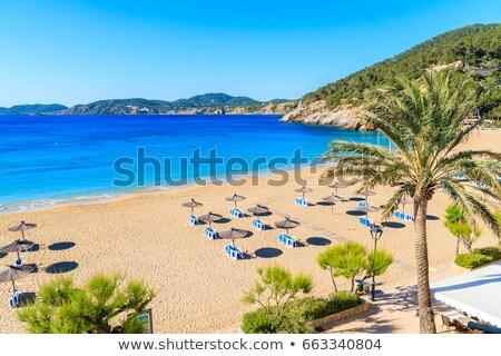 Cala Portinatx beach in Ibiza Island, Spain Stock photo © nito