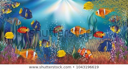 submarino · ícone · vetor · longo · sombra · teia - foto stock © carodi