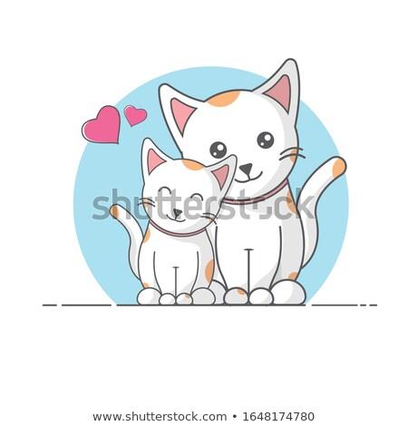 Anne kedi kedi yavrusu duvar mavi hayvan Stok fotoğraf © dutourdumonde