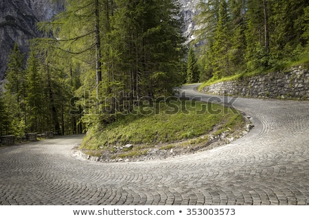 weg · vallen · bos · appalachian · mountains · zon · landschap - stockfoto © stevanovicigor
