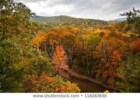 MIdwest River Valleys in the Fall Stock photo © wildnerdpix
