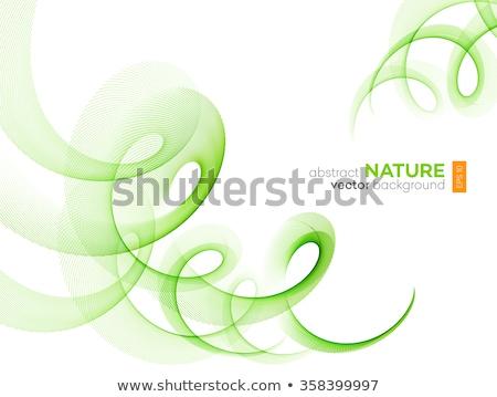 Onda stream line abstract layout Foto d'archivio © fresh_5265954