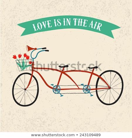 vintage · silhueta · tandem · bicicleta · ícone · isolado - foto stock © nikodzhi