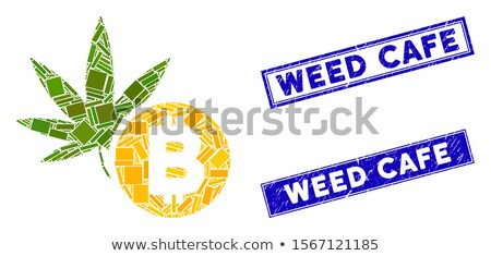 Hennep bitcoin icon vector toepassing web design Stockfoto © ahasoft
