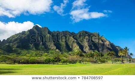 Dağ Hawaii bölüm volkanik Stok fotoğraf © kraskoff