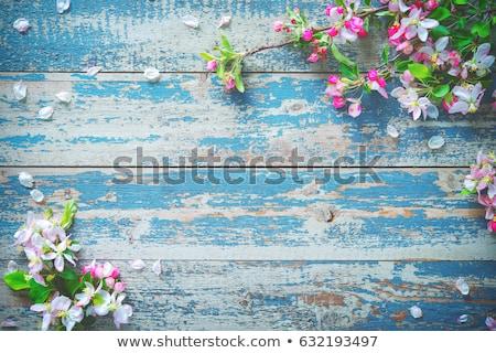 グリーティングカード · 青 · スタイル · イースター - ストックフォト © zerbor