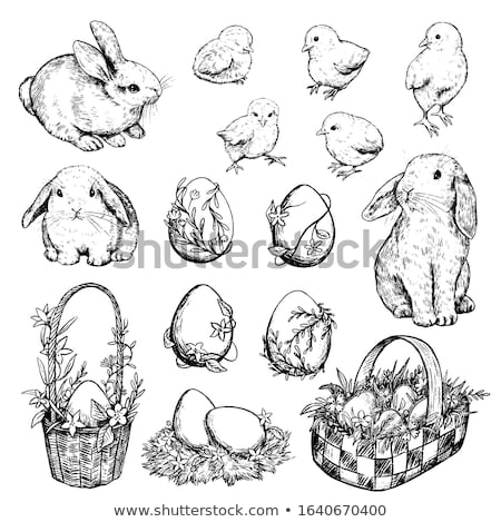 cute white rabbit on nest in basket and chicken eggs on white  Stock photo © LightFieldStudios