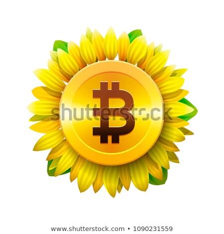 Bitcoin цветок виртуальный деньги подсолнечника икона Сток-фото © ikopylov