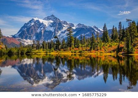 ősz tájkép erdő gyönyörű fák hegy Stock fotó © Kotenko