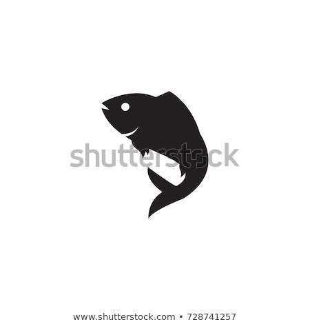 aquarium fish silhouette isolated on white icons stock photo © robuart