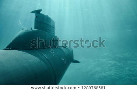 Podwodny ikona wektora długo cień internetowych Zdjęcia stock © smoki