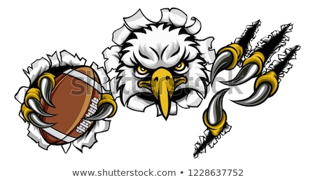 Eagle Football Cartoon Mascot Tearing Background Stock photo © Krisdog