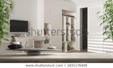 Iránytű fehér harmónia mágneses tű mutat Stock fotó © make