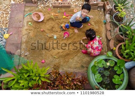 3  家 遊び場 実例 ツリー 建物 ストックフォト © bluering